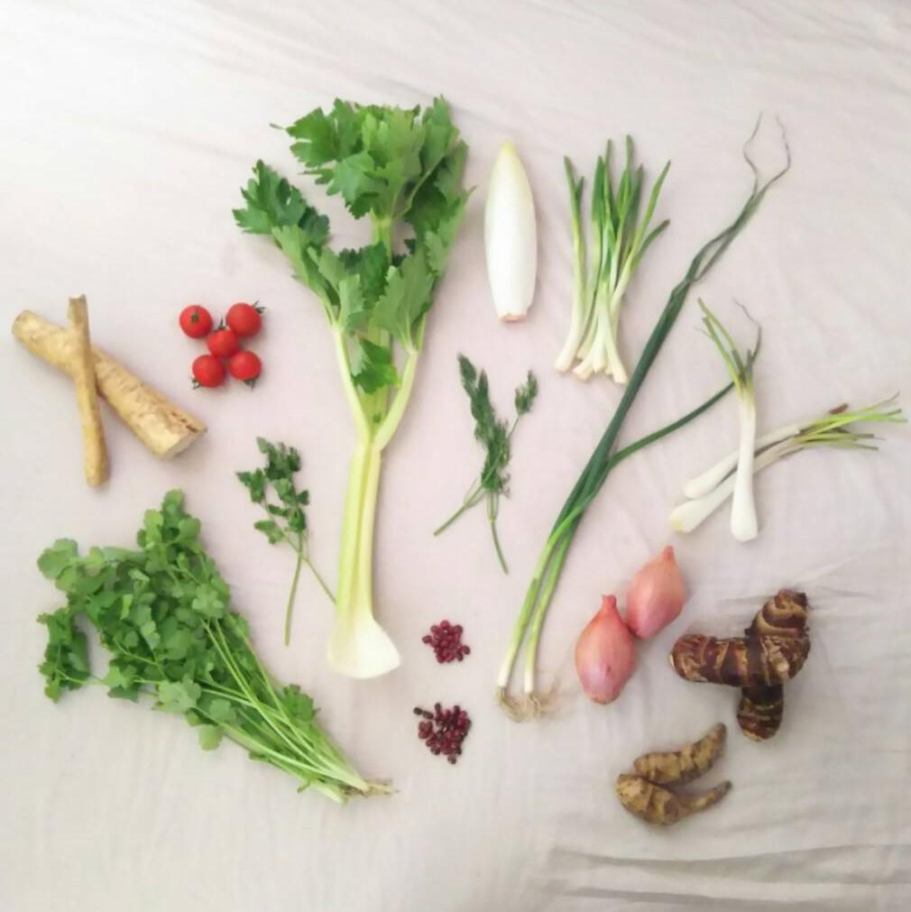 まぎらわしい野菜を区別しよう♪モヤモヤ整理
