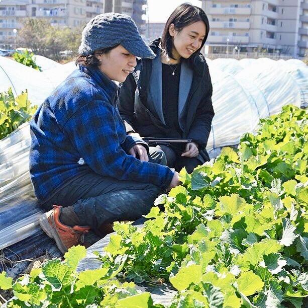 和歌山訪問レポート・前編「ファームゆうき」片岡さん