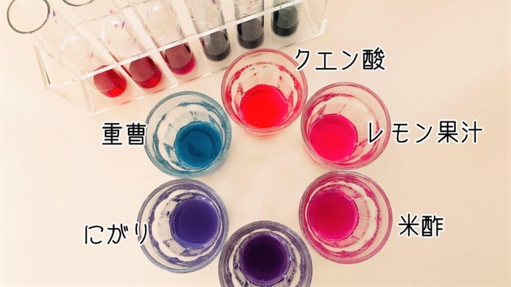 【夏休み自由研究】紫キャベツの色素アントシアニンで野菜の色実験をしよう!