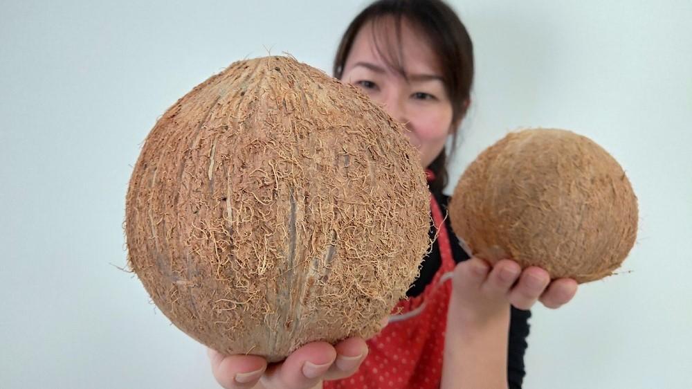 ココナッツの実にストローをさす飲み方に挑戦!ココナッツミルク…