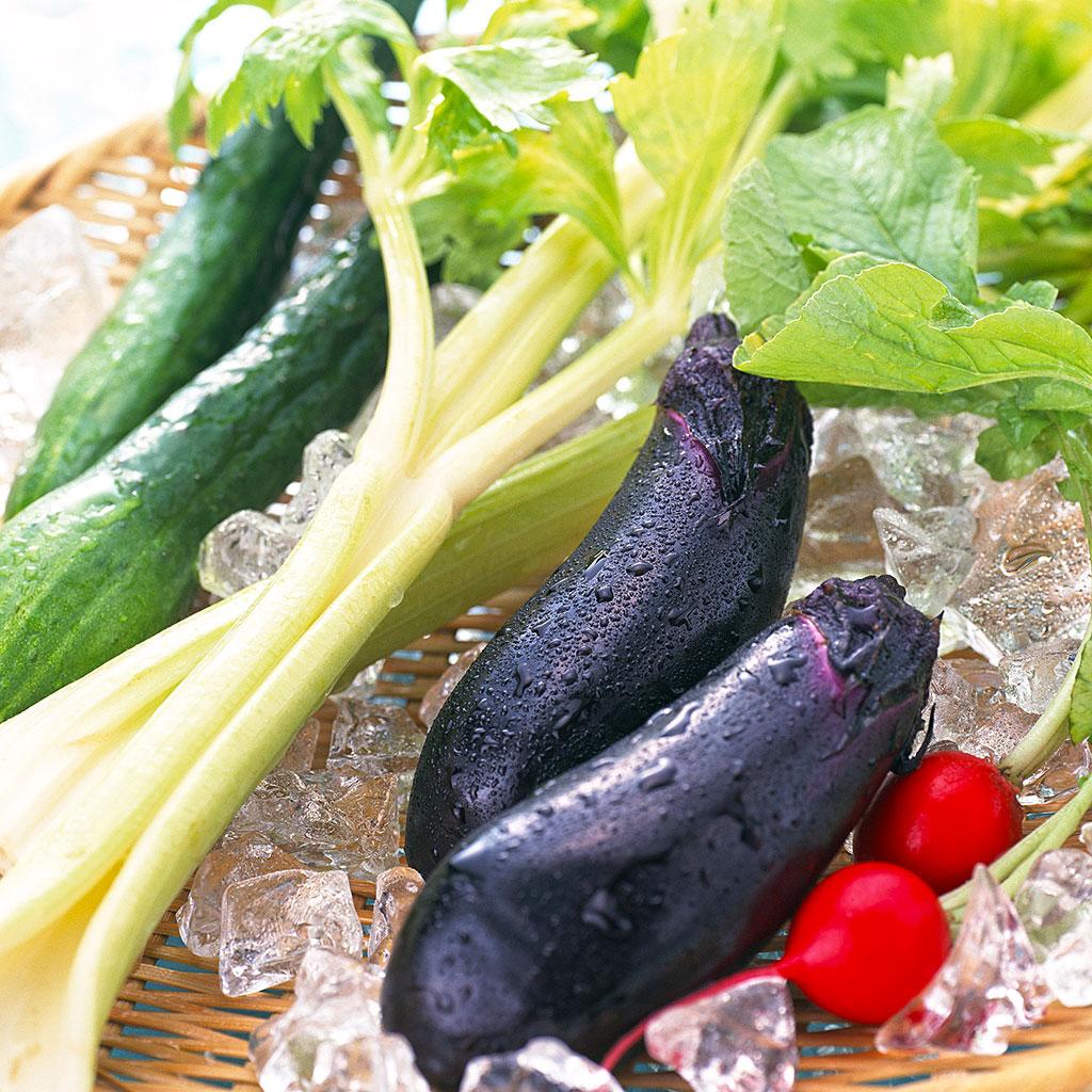 【自由研究テーマ一覧】夏休みは野菜実験!
