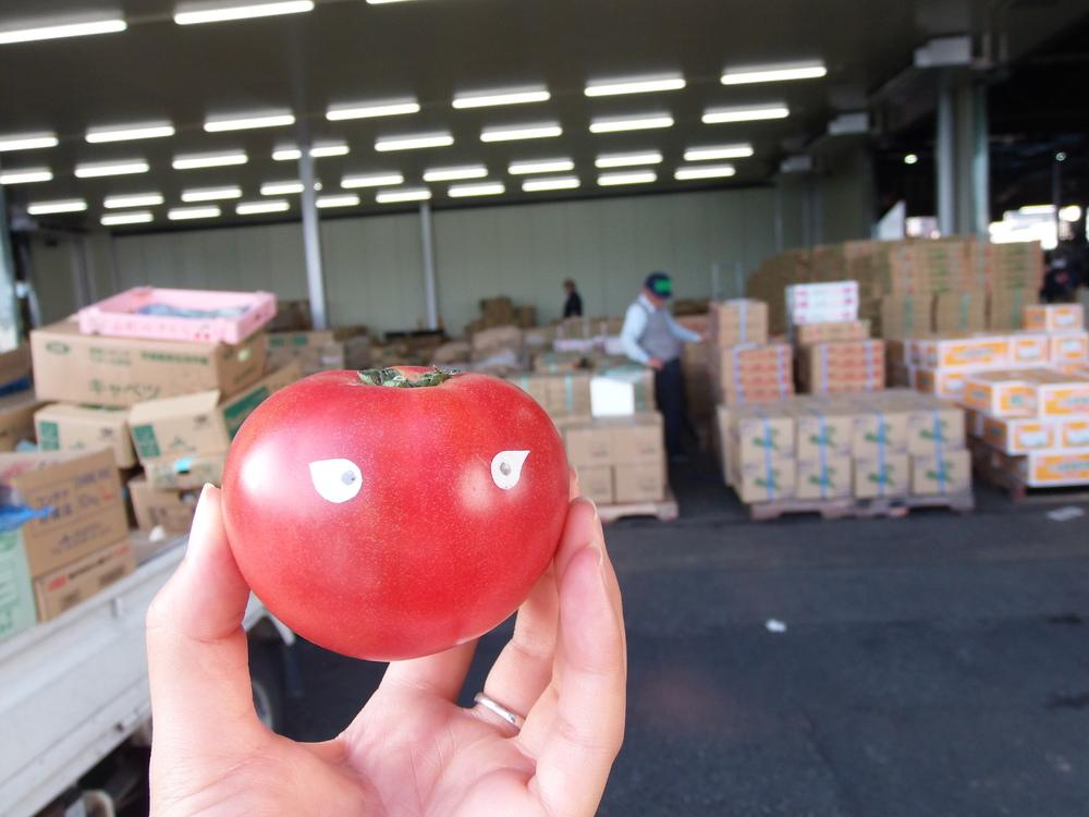 トマトの大冒険~市場から八百屋、私達に届くまで