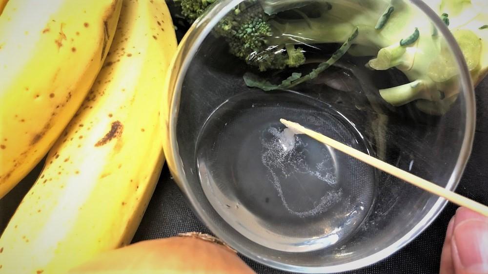 【夏休み自由研究】野菜のDNAを取り出してみよう!